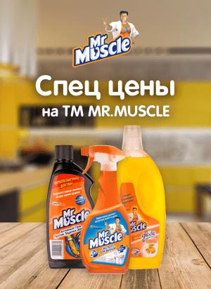 Спец Цены на MR.MUSCLE