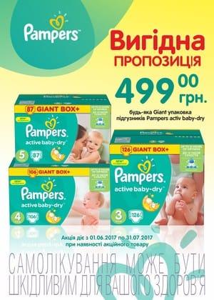 Акция на подгузники PAMPERS Activebaby giant box+ 499,00грн на июнь и июль